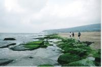 עצומה לביטולה של התוכנית לבנייה מלונאית על חוף נחל בצת - המאבק נמשך!