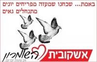 העלאת פלסטינאים לקווי האוטובוס ביהודה שומרון ובינימין
