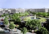 כיכר דיזנגוף 2013: גן ירוק במקום בטון וחניון!