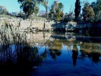 מצילים את בריכת ממילא: מהרס טבע, היסטוריה ותרבות!