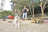 לעצור את עיריית פתח תקווה מלהגביל תושבים בהחזקה של עד 2 בעלי חיים