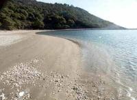 יצירת חוף נודיסטים בארץ